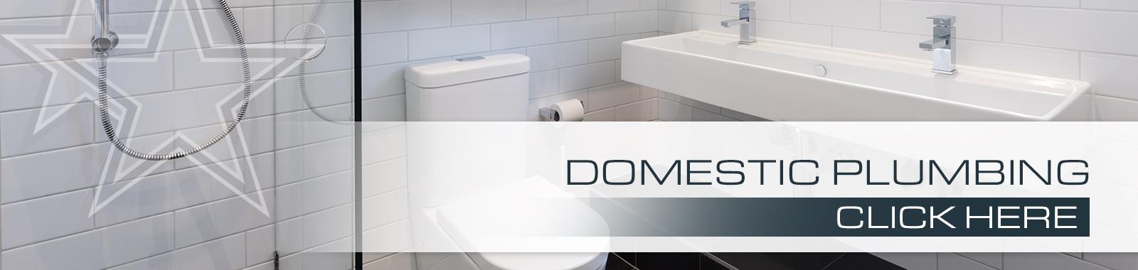 banner_domestic